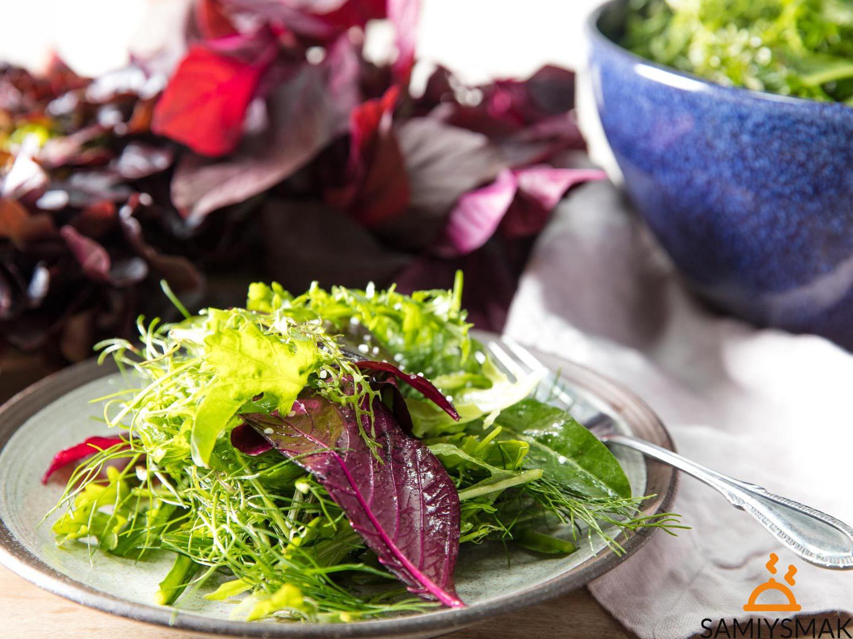Летние салаты из зелени