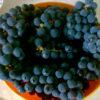 Вкусные заготовки из винограда на зиму