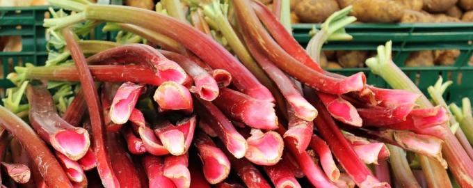 Вкусное и простое варенье из ревеня
