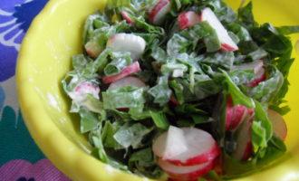 Какой салат сделать с редиской