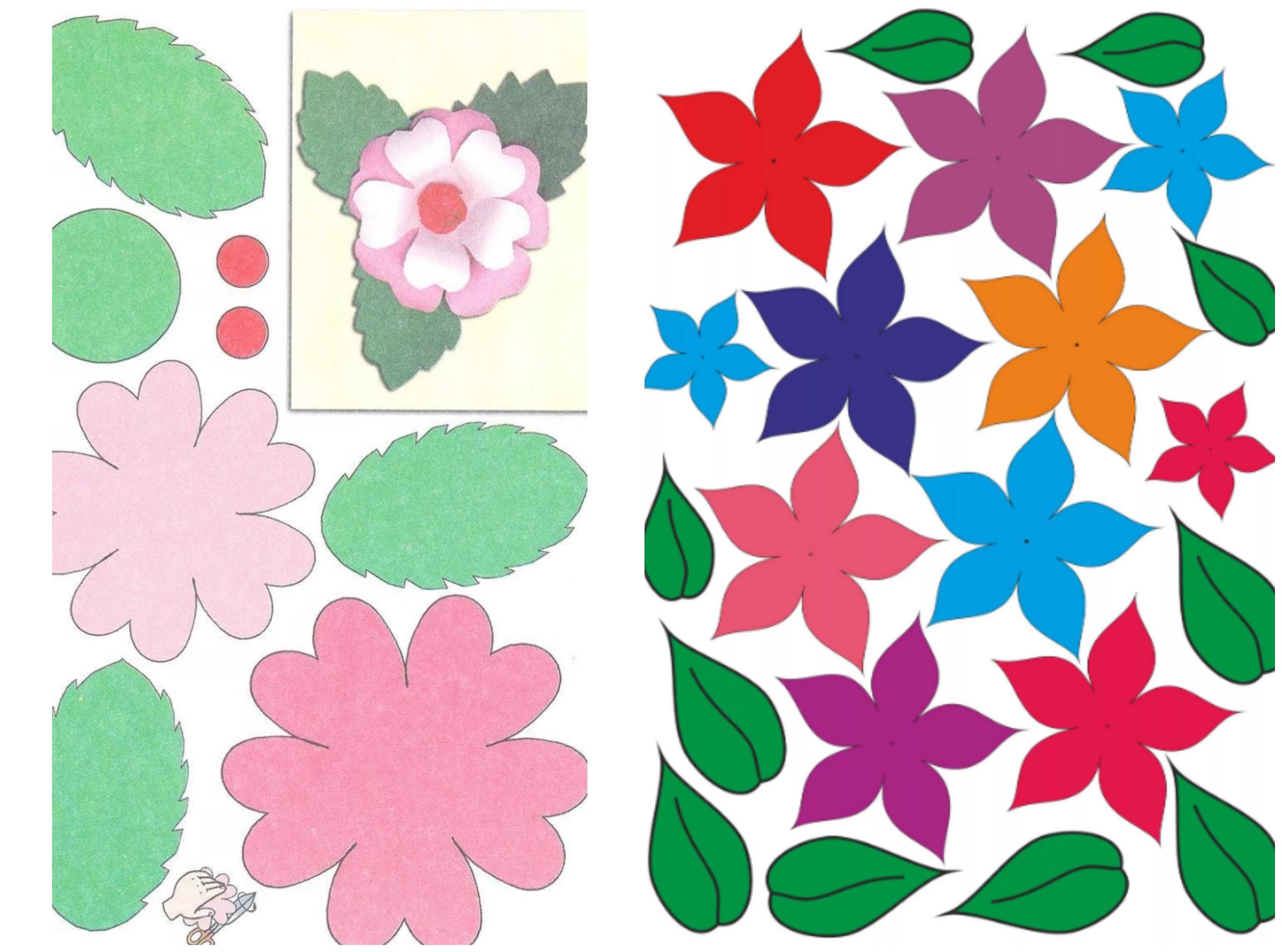 Цветной шаблон для цветков