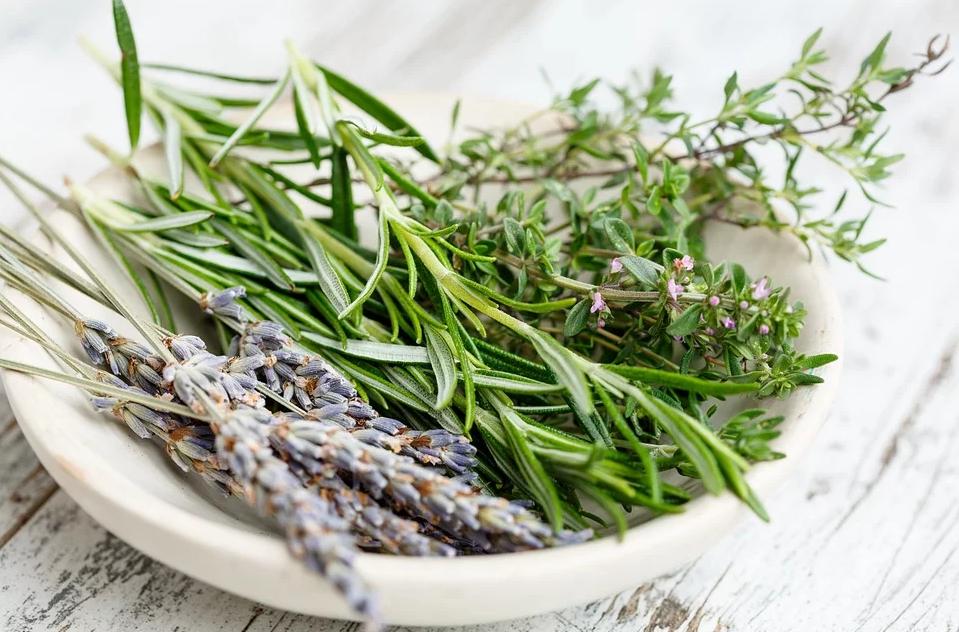 Пряные травы в оливковое масло