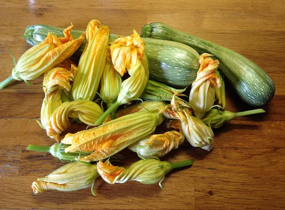 Выбранные цветы кабачков