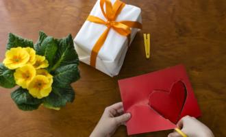 Набор для выращивания в подарок